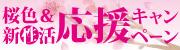 桜色&新性活応援キャンペーン